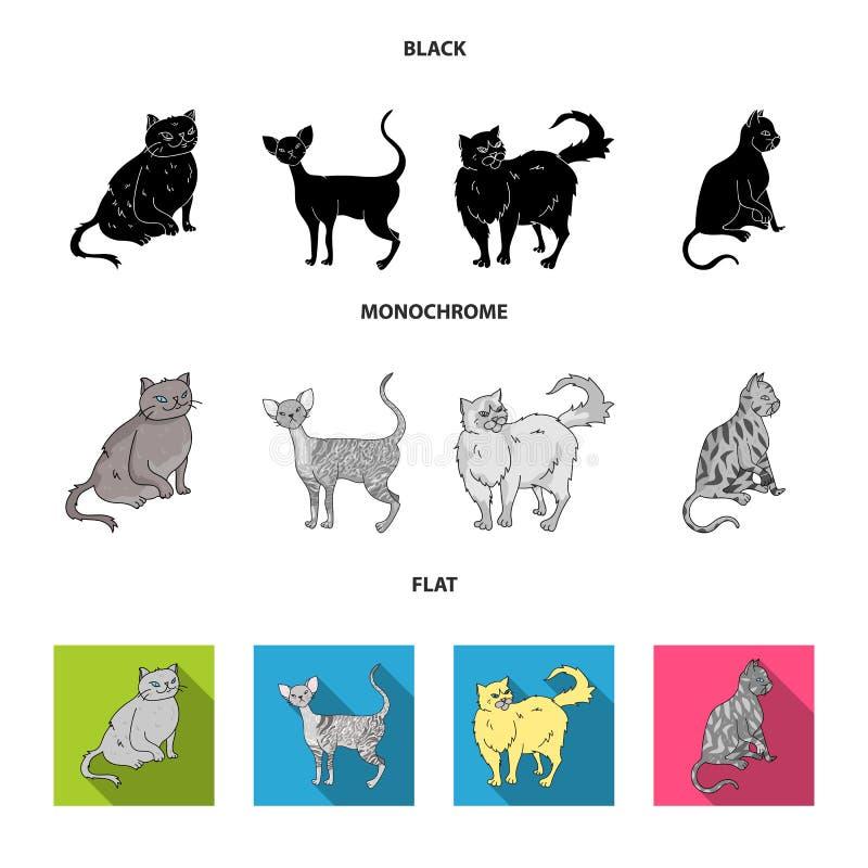 Perser, cornisk rex och annan art Symboler för samling för kattavel fastställda i svart, lägenhet, monokromt stilvektorsymbol vektor illustrationer