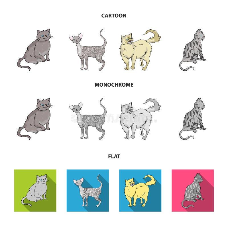 Perser, cornisk rex och annan art Symboler för samling för kattavel fastställda i tecknade filmen, lägenhet, monokromt stilvektor stock illustrationer