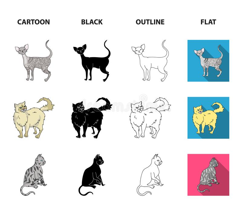 Perser, cornisk rex och annan art Symboler för samling för kattavel fastställda i tecknade filmen, svart, översikt, lägenhetstilv vektor illustrationer