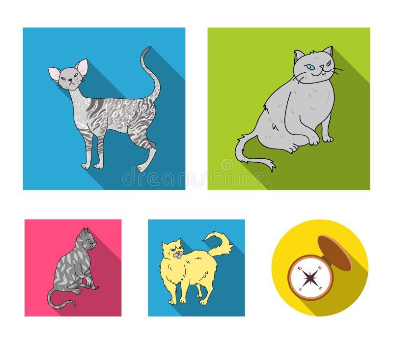 Perser, cornisk rex och annan art Symboler för samling för kattavel lagerför fastställda i plant stilvektorsymbol illustrationen royaltyfri illustrationer