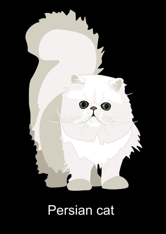 Download Persian cat stock illustration. Image of darling, breed - 11150725