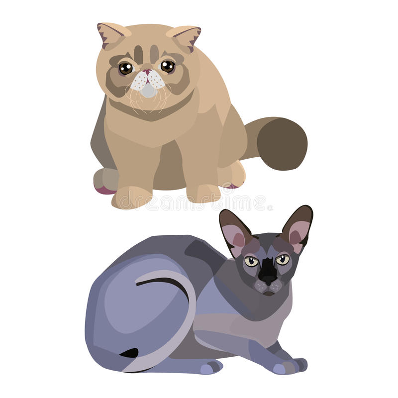 Persian and sphinx. Cats set cute stock illustration