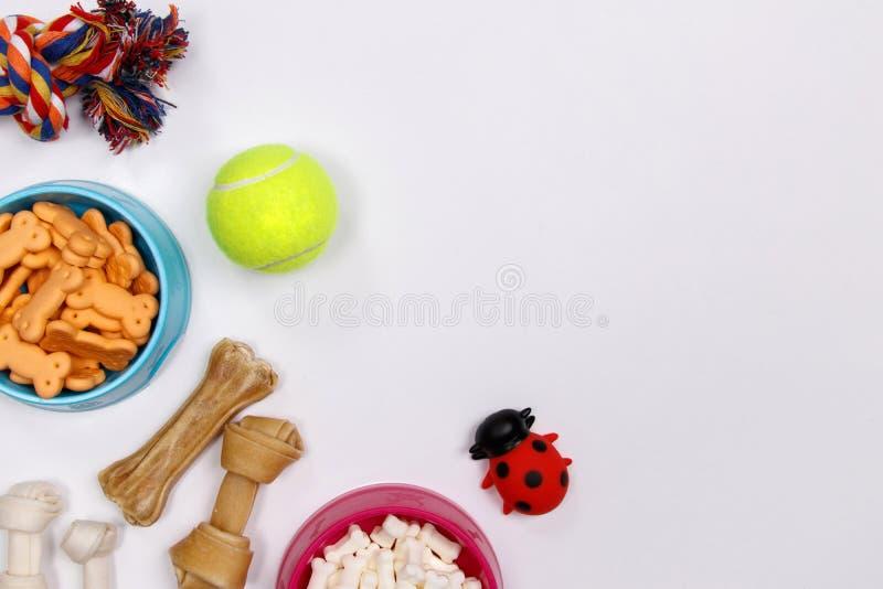 Persiga acessórios, alimento e brinquedo no fundo branco Configuração lisa Vista superior foto de stock