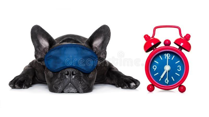 Persiga dormir foto de archivo libre de regalías