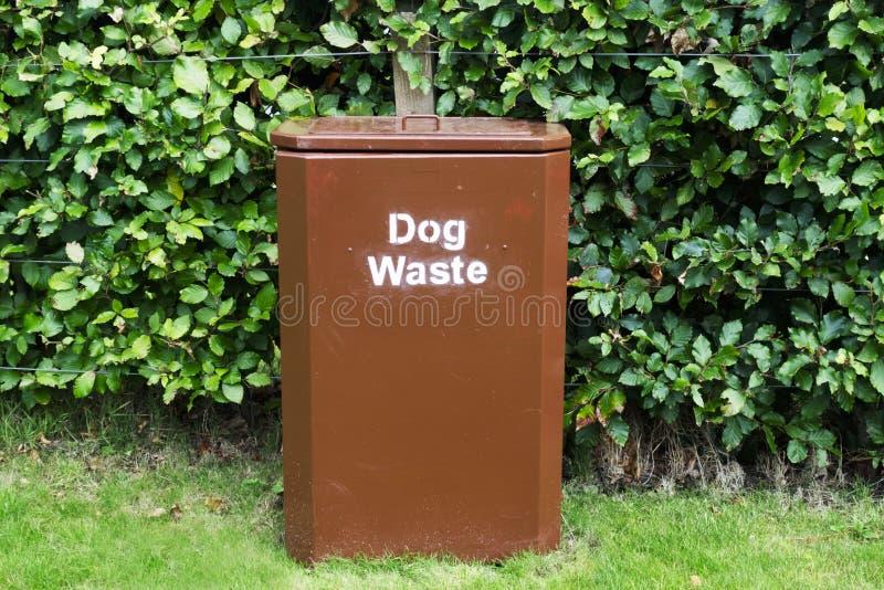 Persiga el compartimiento marrón inútil en hierba contra el seto en parque para permanecer limpio y ordenado imagen de archivo libre de regalías