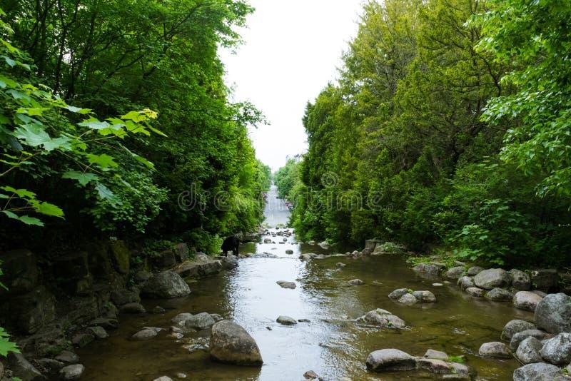 Persiga oler una cascada que lleva a un camino de ciudad imagen de archivo