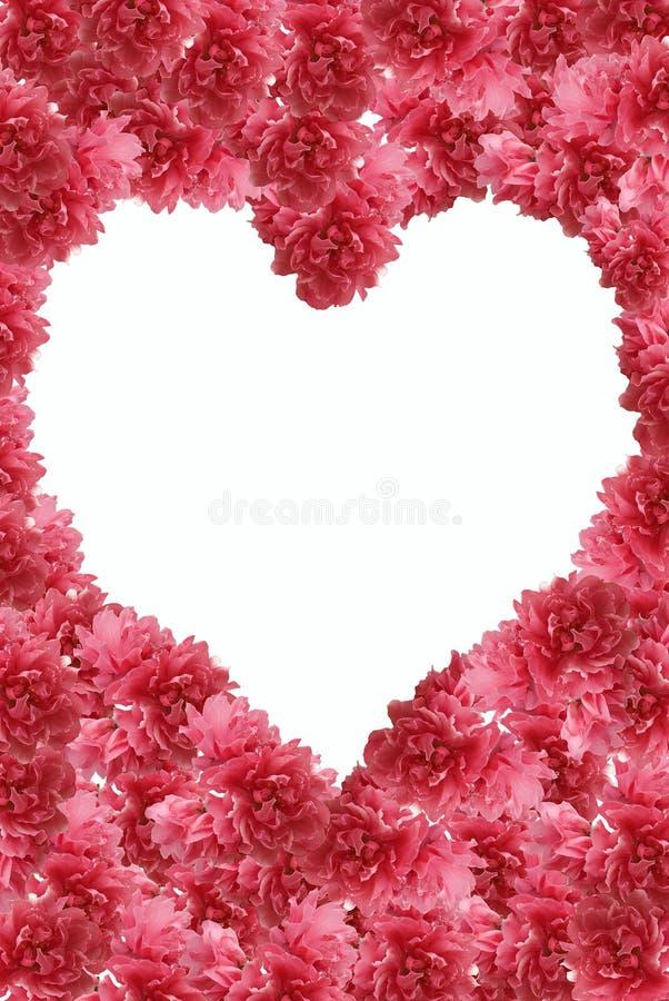 persika för hjärta för blommadatalistram arkivfoto