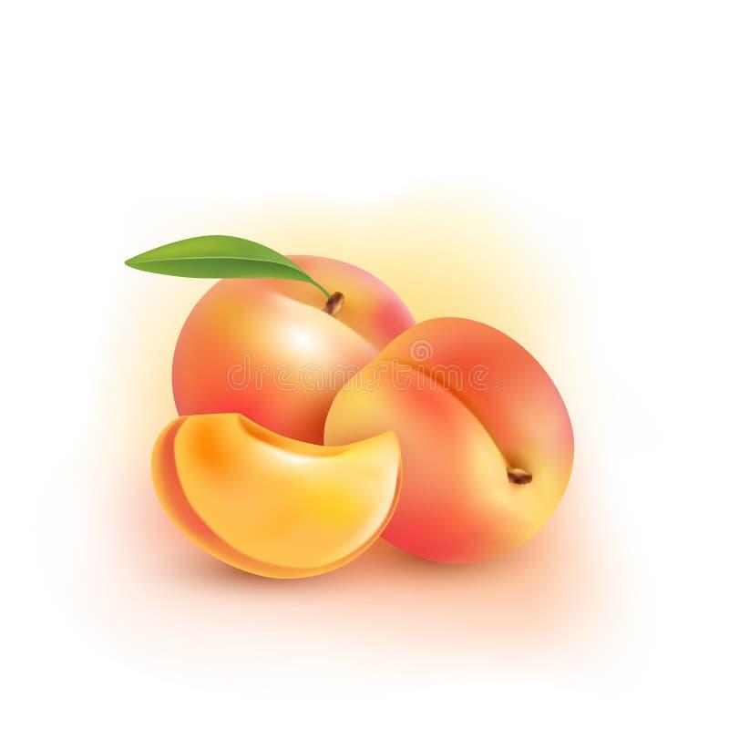 persika Söt frukt symbolsuppsättning för vektor 3d realistisk ballonsillustration royaltyfri illustrationer