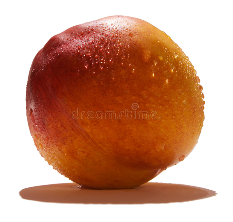 persikaförnyelse arkivbild