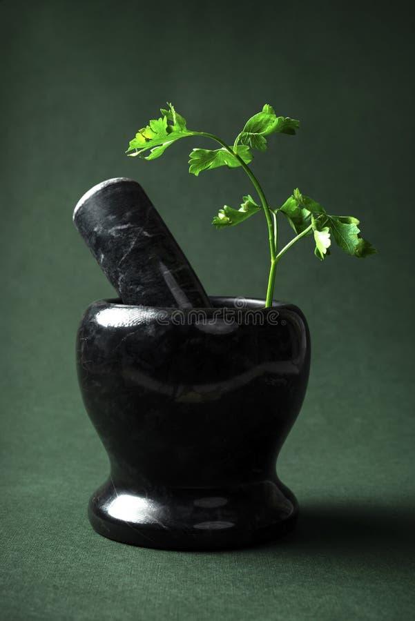 Persil frais dans un mortier de marbre noir avec le pilon images stock