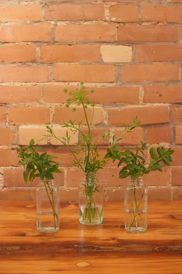 Persil, menthe, herbes dans des bouteilles en verre ; arrangement floral rustique et naturel photographie stock