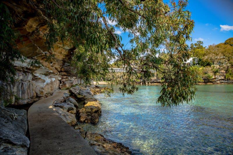 Persiljafjärdstrand i Sydney arkivbild