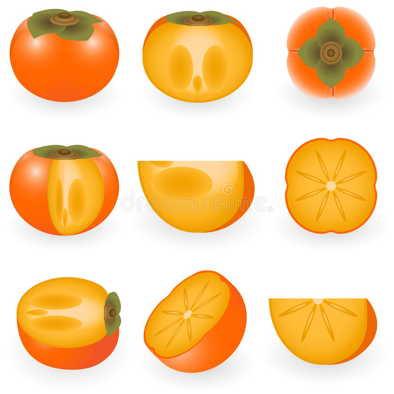 Download Persimmon Royalty Free Stock Image - Image: 12422796