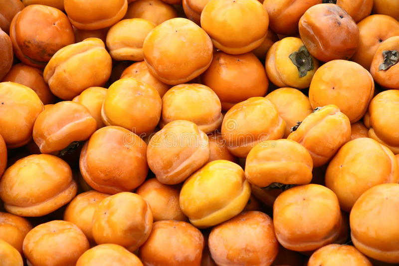 Download Persimmons stock image. Image of background, persimmons - 17033321