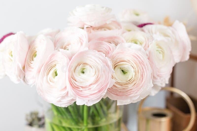 Persische Butterblume Bündel blaß - rosa Ranunculus blüht hellen Hintergrund Glasvase auf rosa Weinleseholztisch stockfoto