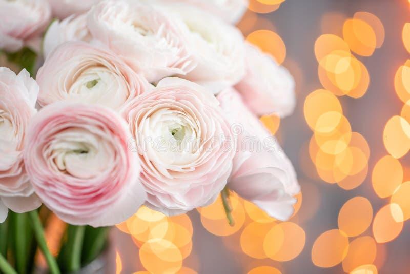 Persisk buttercup Blek grupp - rosa ranunculusblommor i exponeringsglasvas Girlandbokeh på bakgrund Horisontaltapet royaltyfria bilder