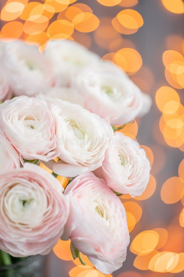 Persisk buttercup Blek grupp - rosa ranunculusblommor i exponeringsglasvas Girlandbokeh på bakgrund Vertikal tapet fotografering för bildbyråer