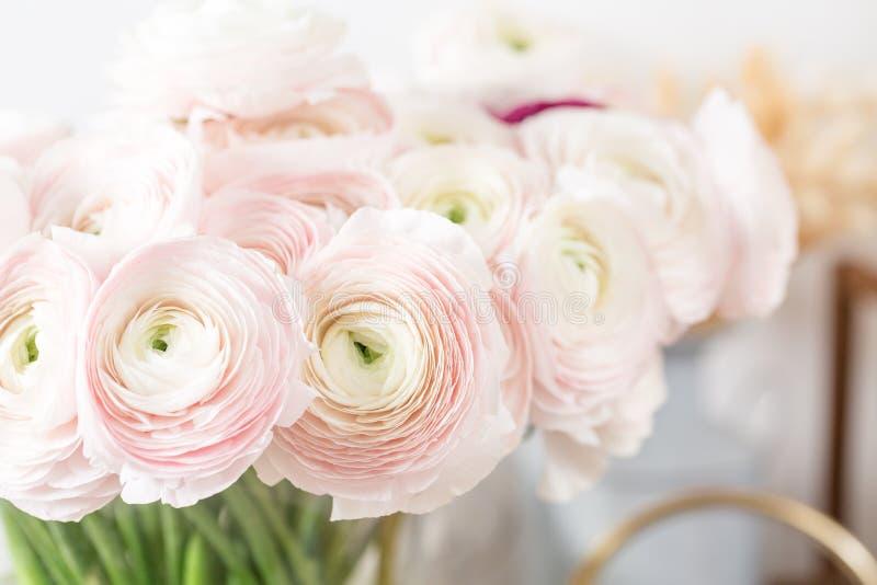 Persisk buttercup Gruppgräns - den rosa ranunculusen blommar ljus bakgrund Glass vas på trätabellen för rosa tappning royaltyfri foto