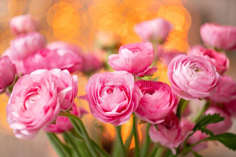 Persisk buttercup Karmosinröda rosa ranunculusblommor för grupp i exponeringsglasvas Girlandbokeh på bakgrund wallpaper royaltyfria foton