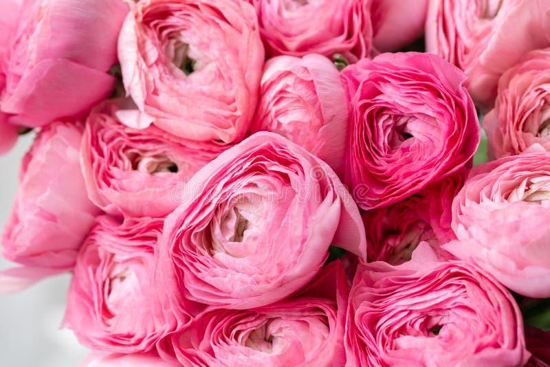 Persisk buttercup Rosa ranunculusblommor för grupp i exponeringsglasvas 0 tillgängliga eps blom- versionwallpaper för 8 Textur av royaltyfri bild