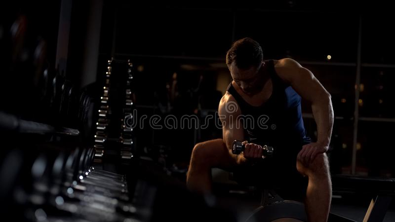 Persistent sportsman doing dumbbell concentration curl, evening workout in gym stock images