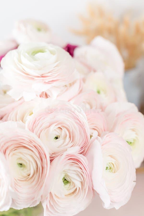 Perski jaskier Wiązki ranunculus jasnoróżowych kwiatów lekki tło Szklana waza na różowego rocznika drewnianym stole obrazy royalty free