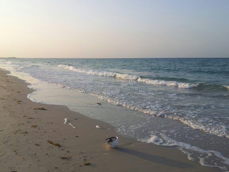 Perskiej zatoki seashore przy Arabia Saudyjska blisko budowy obraz royalty free