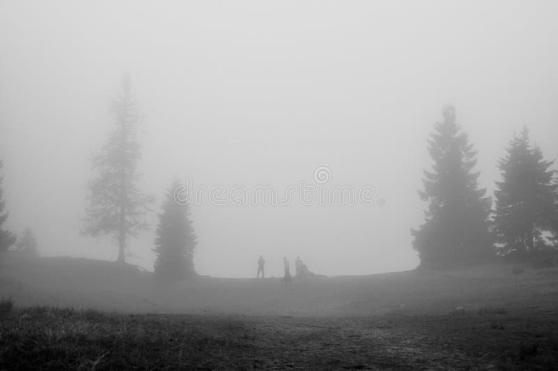 Perso nella nebbia fotografia stock libera da diritti