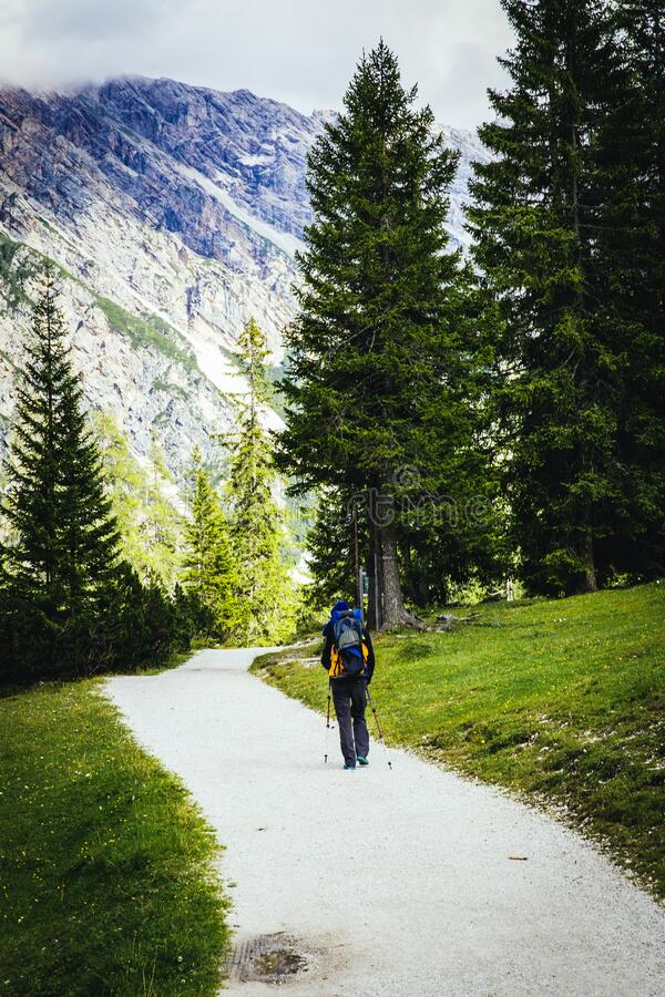 Person With Backpack Hiking Near Trees and Green Grass stock image