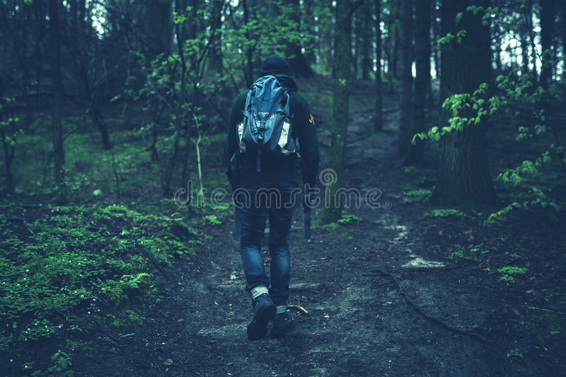 Person In Black Jacket Walking On Black Soil Between Green Leaf Trees Free Public Domain Cc0 Image