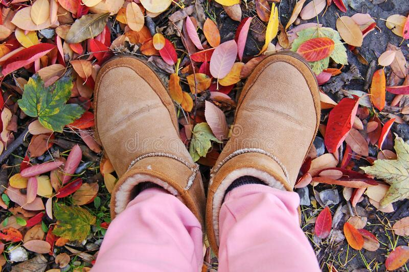 Person In Brown Sheepskin Boots And Pink Pants Standing On Leaf Covered Ground Free Public Domain Cc0 Image