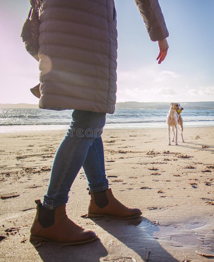 Person in Bubble Coat Walking on Beach Near Dog at Daytime royalty free stock photos