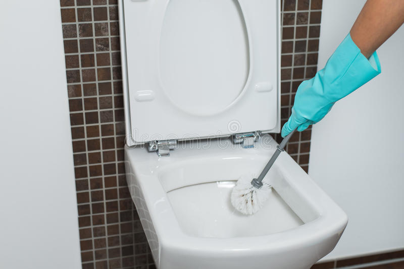 Person cleaning under the rim of a toilet bowl. Person wearing a turquoise rubber glove cleaning under the rim of a toilet bowl with a toilet brush to eradicate stock image