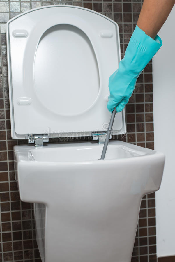 Person cleaning under the rim of a toilet bowl. Person wearing a turquoise rubber glove cleaning under the rim of a toilet bowl with a toilet brush to eradicate stock photo