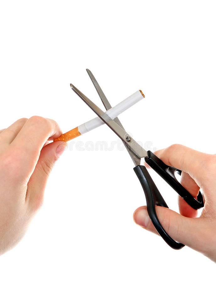 Person cutting a Cigarette royalty free stock photo