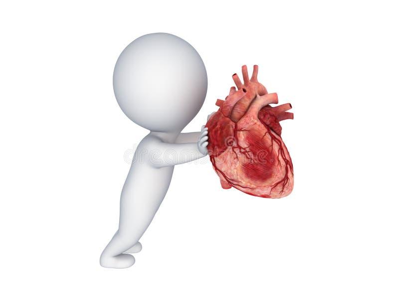 Niedlich Menschliches Herz Diagramm Ideen - Anatomie und Physiologie ...