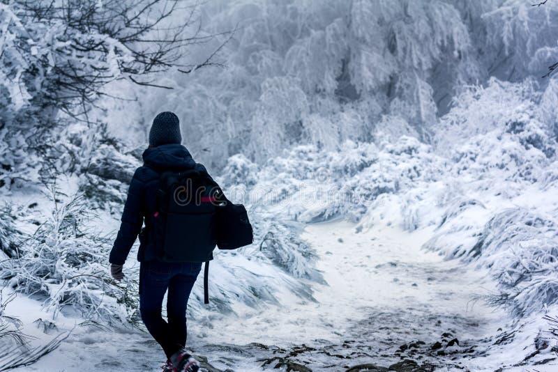 Person, die auf Schnee auf sehr kalter Landschaft geht lizenzfreies stockbild