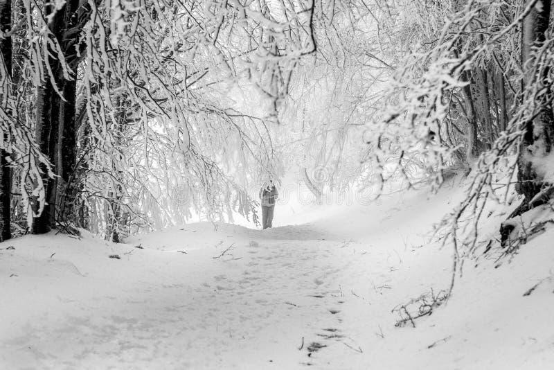Person, die auf Schnee auf sehr kalter Landschaft geht stockfotografie