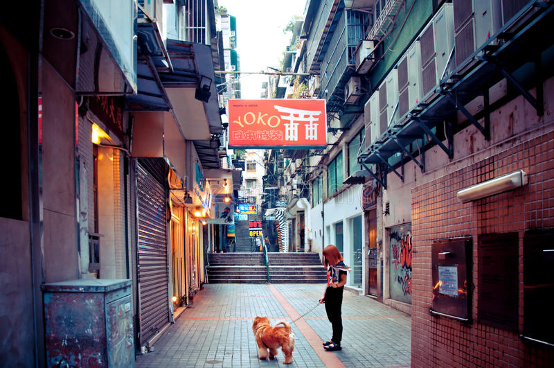 Download Person With Dog Walking In Macau Editorial Photography - Image: 26839122