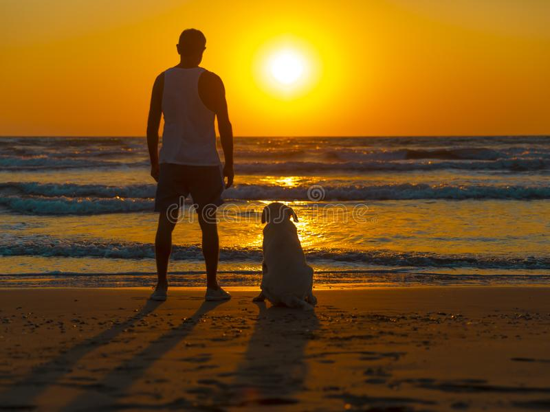 Person and dog watching together the sunset on the seashore. royalty free stock photography