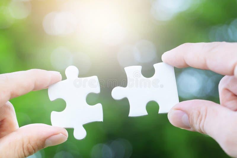 Person för två händer som försöker att förbinda stycket för pussel för parfigursågpapper det vita med ny bakgrund för träd en del arkivbilder