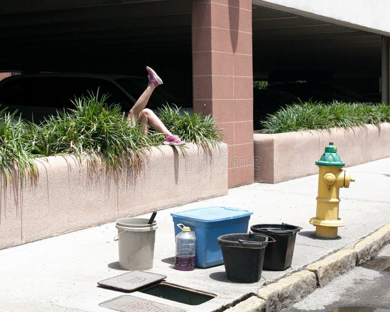 Person Falling Into Bush arkivfoto
