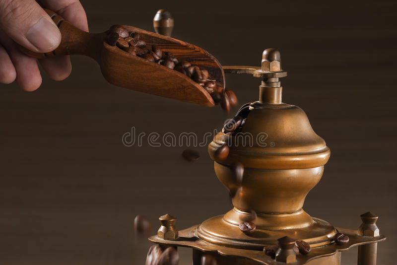 Person fills a shovel from an tree coffee grains, in the coffee grinder stock photo