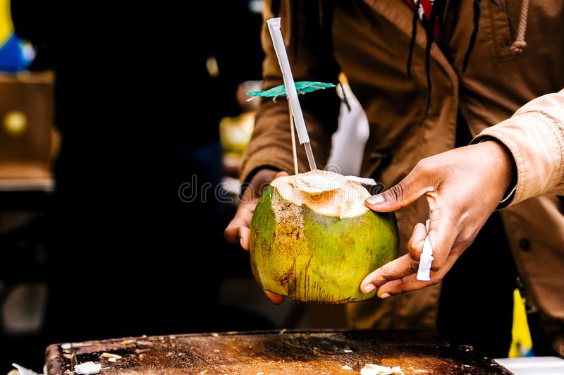 Person Holding Coconut stock image