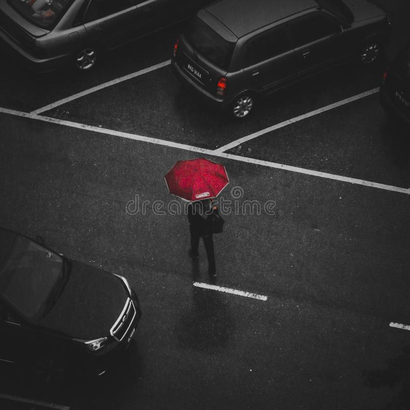 Person Holding Red Umbrella Walking on Street stock photo