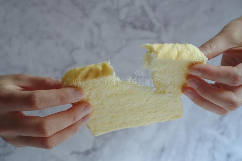 Person Holding Slice of Loaf Bread stock image