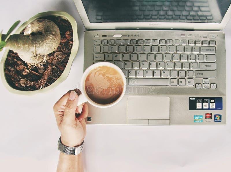 Person Holding White Mug on Gray Laptop Computer royalty free stock photo