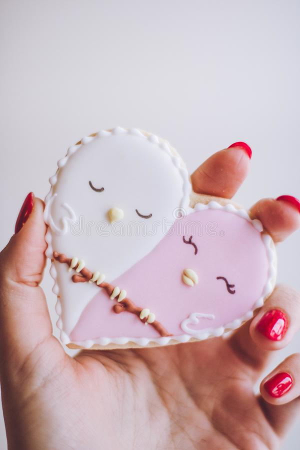 Person Holding White and Pink Heart Figure stock photos