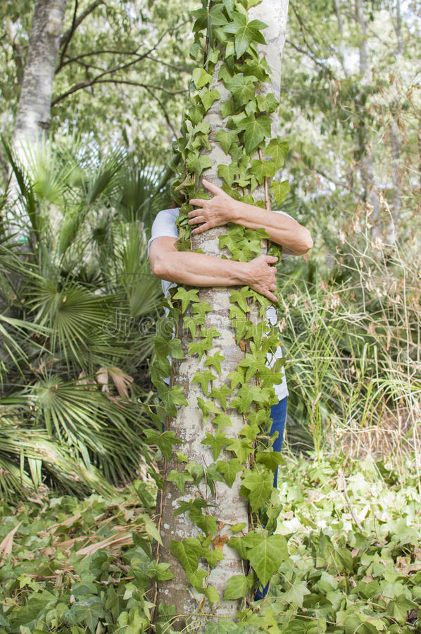 Person hugging tree royalty free stock photo