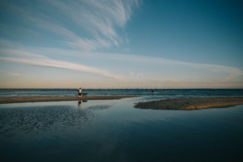 Person med en hund som lite går runt om sjön med att förbluffa himmel i bakgrunden royaltyfri bild